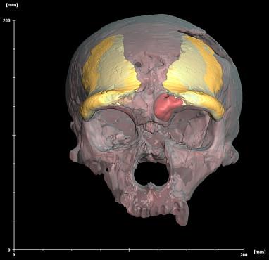 неандерталец внешность